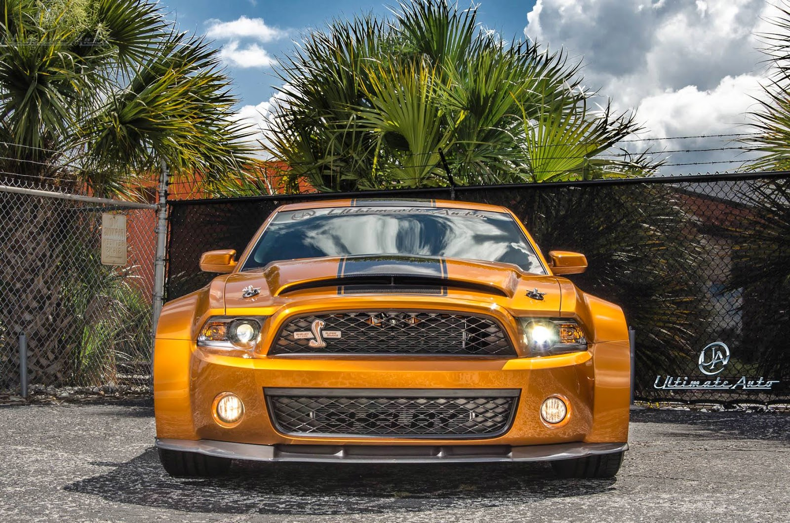 2015 ford mustang shelby gt500 super snake