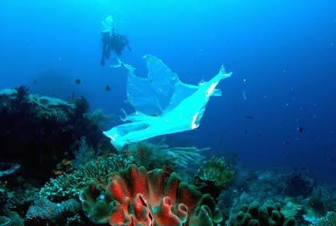 plastic bag ocean pollution