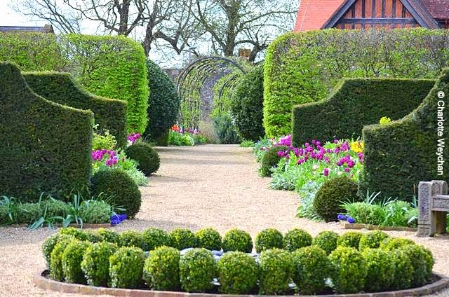 Yew Resses Provide A Focal Point In The Herbaceous Borders At Arundel Castle