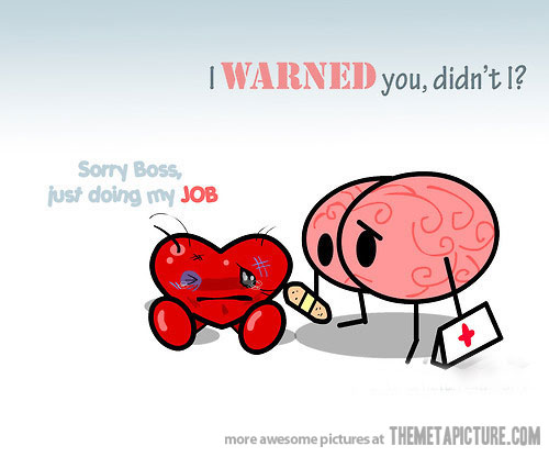 funny heart vs brain jokes funny world