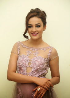 Actress Seerat Kapoor Pictures in Long Dress at Tiger Audio Launch 13.JPG