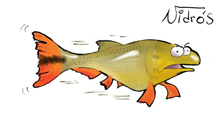 Dibujo del pez Dorado - Imagui