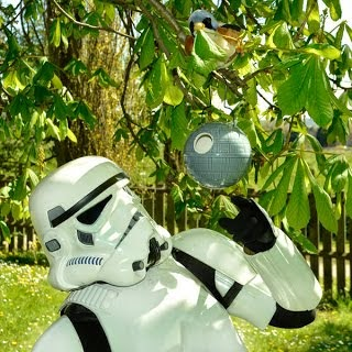 Item of the week: Death Star Birdhouse