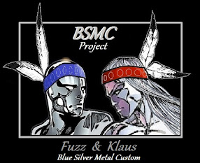 Creators: BSMC Project      Silvery Brothers