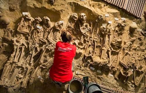Info menarik ! Ratusan Tengkorak Abad Pertengahan Ditemukan Di bawah Supermarket Paris