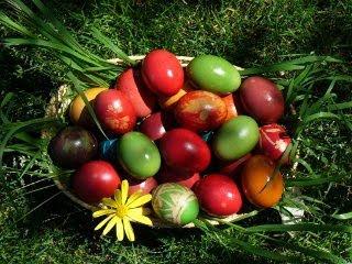 Uskrsna jaja na travi download besplatne pozadine slike za mobitele