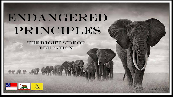 Endangered Principles