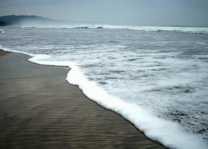Pantai Trianggulasi di kawasan Taman Nasional Alas Purwo, Banyuwangi.
