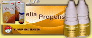 Kelebihan produk-produk PT. MELIA SEHAT SEJAHTERA adalah :