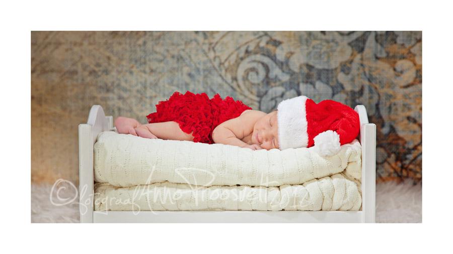 vastsyndinud-pakapikk-magab