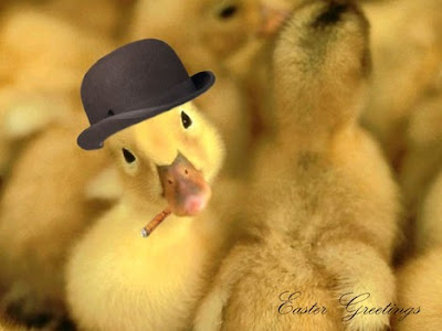 Ducky Greetings