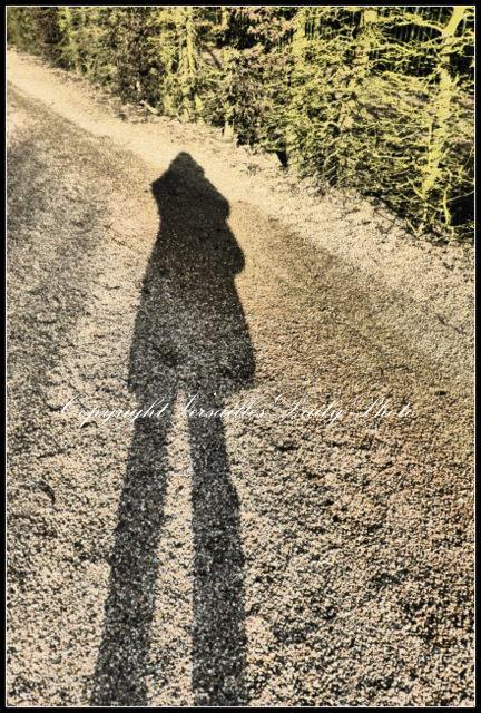 VDP shadow selfie