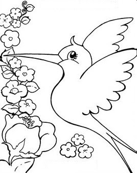 Desenho Flor on Beija Flor Desenho Desenhos Para Colorir Pictures