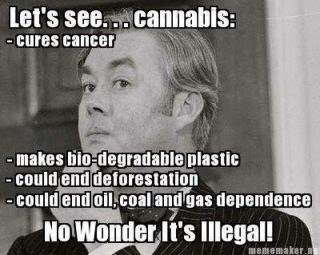 cannabis musing... [click pic]