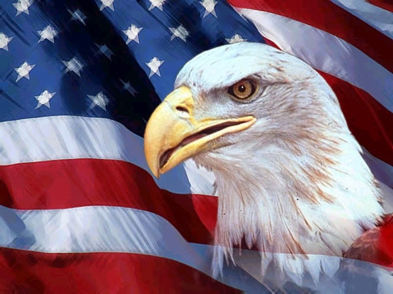 Beautiful Eagle American Flag Desktop Backgrounds Image for 4th of July