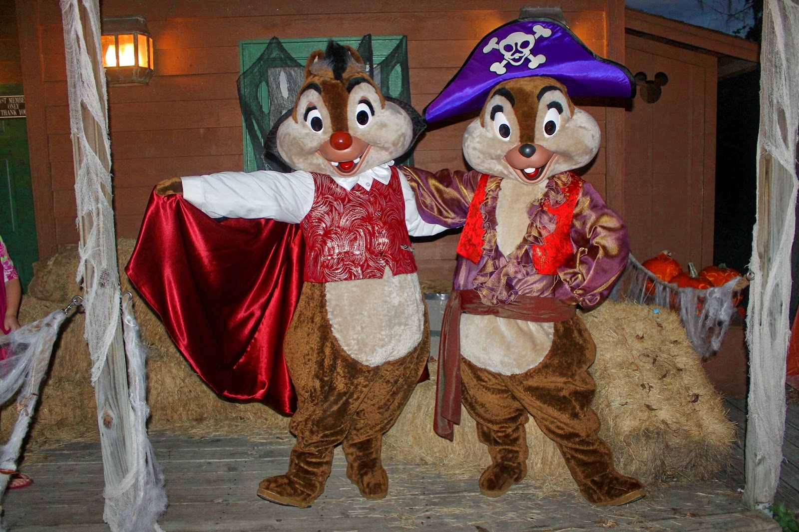 Chip Dale Halloween Disney Character Hunt Fort Wilderness Campfire