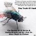 Penelitan Ilmah Lengkap Tentang Hadist Lalat