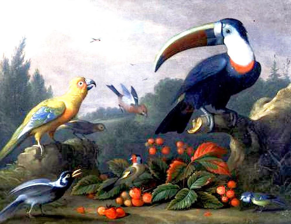 bodegones-exoticos