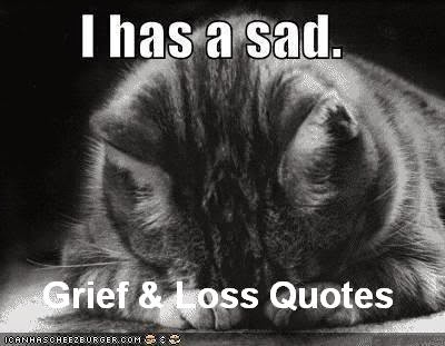 Inspiring Grief and Bereavement Quotes