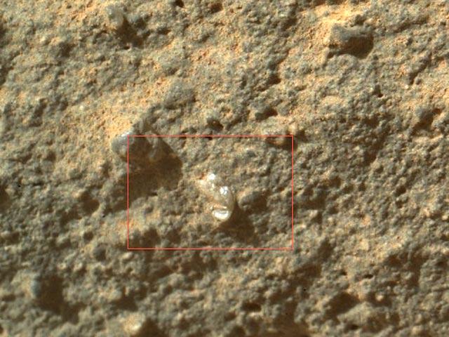 Curiosity сфотографировал «марсианский цветок»
