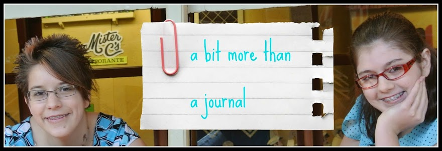 A Bit More Than A Journal
