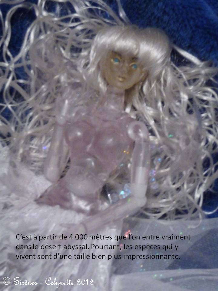 (C)arnets 2 Voyages: Neptune p29/Baby-Lancer St Valentin p30 - Page 2 Diapositive13