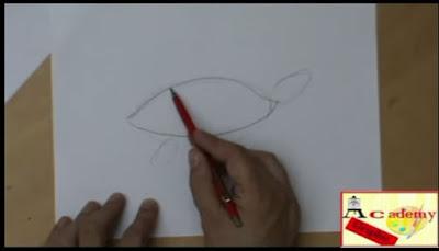 disegnatori illustratori