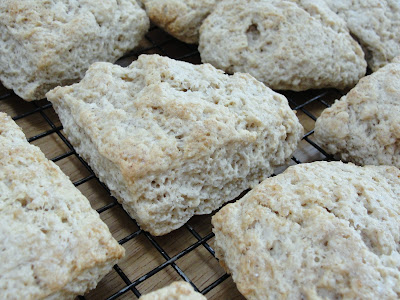 Sourdough Scones Recipe (Sourdough Surprises)