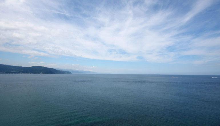 広い大海原を眺めると、いつしか心が和んでまいります。