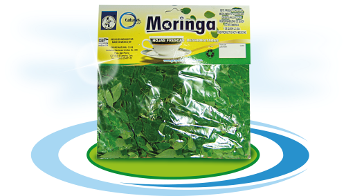 Te de moringa diabetes.etc