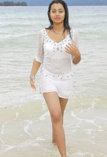 Hot Trisha in Bikini Photos