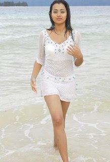 Hot Trisha in Bikini Photos