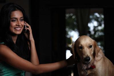 sarah jane dias from khiladi movie actress pics
