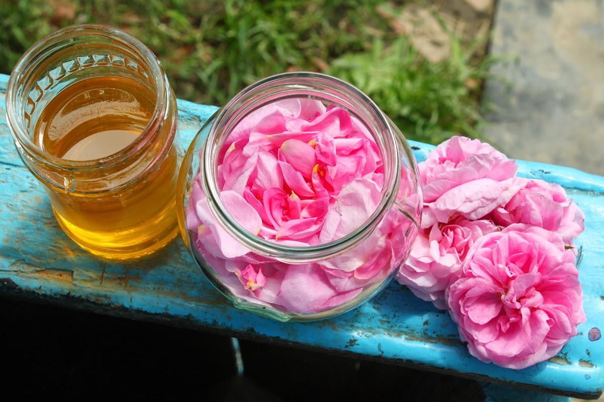 Cum recunosti mierea de calitate de cea contrafacuta
