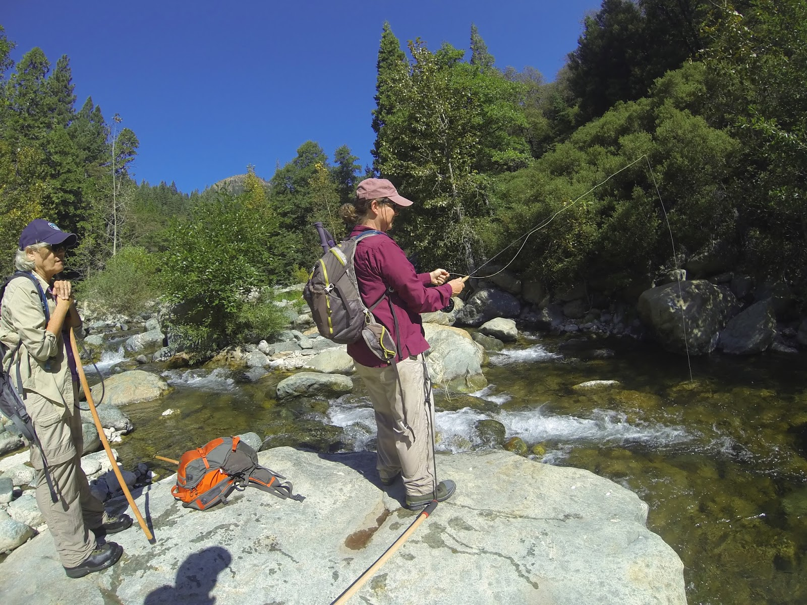 Jon baiocchi fly fishing news north fork yuba river for Jon b fishing