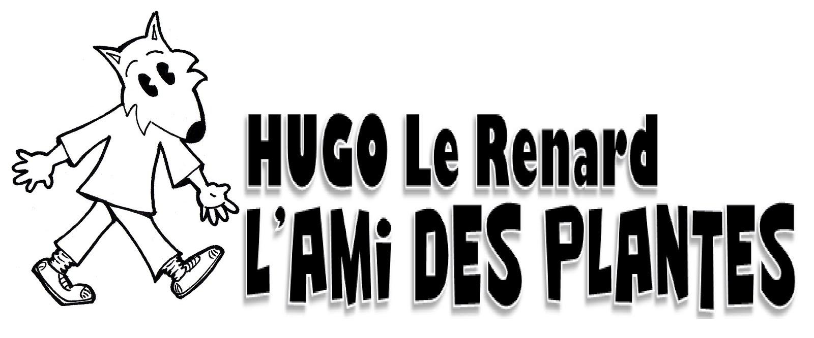 Hugo le renard