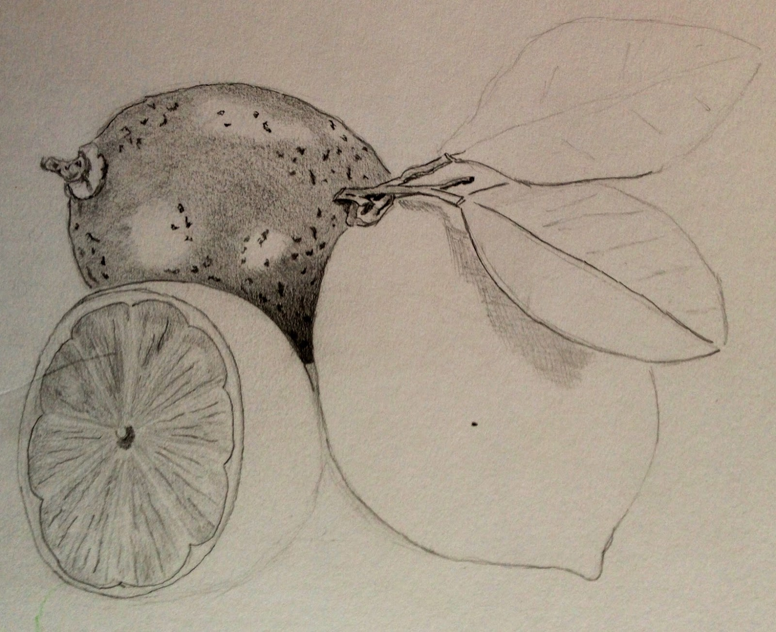 11 – Drawing fruit and vegetables in colour | OCAdrawing1jfm