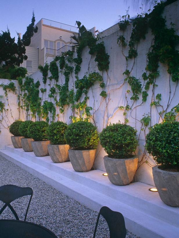 fotos jardins lindos:Topiary Gardens with Container