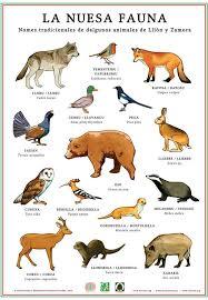 La nuesa fauna