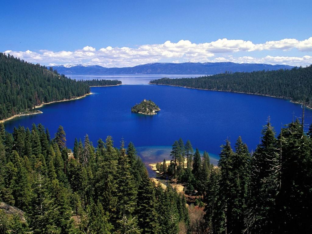 Forest lake casino