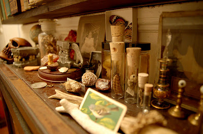 wunderkammer shelf