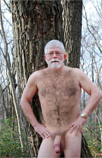 old daddy bear