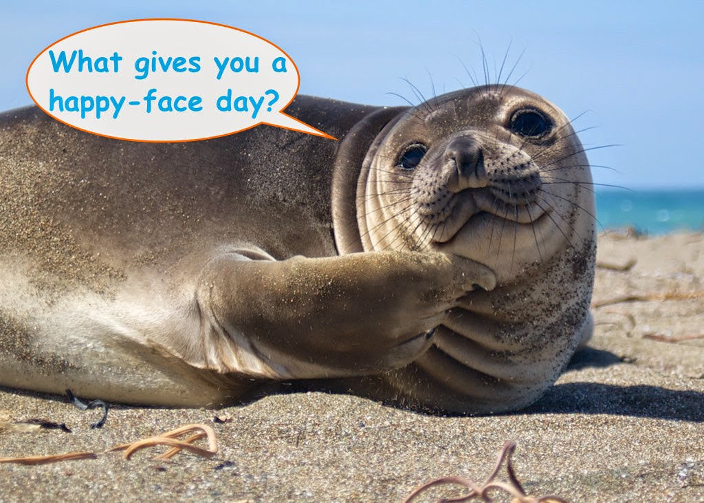 Happy-face Day!
