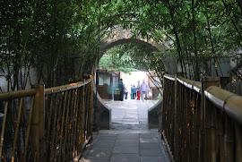 Porte Tao
