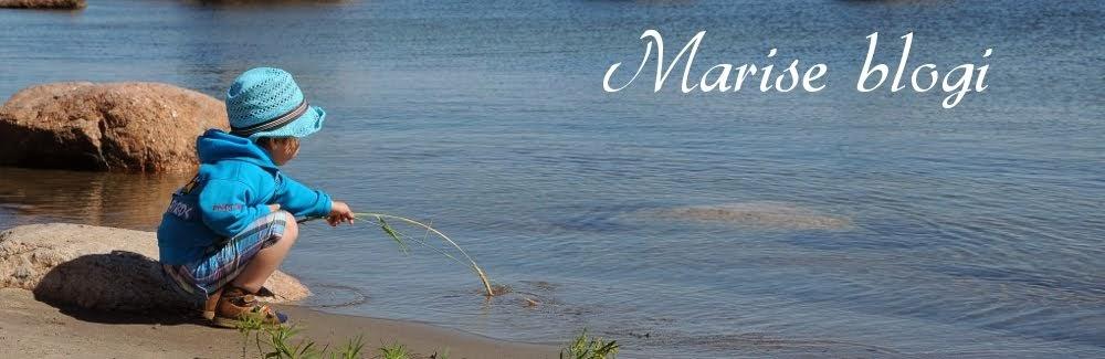 Marise blogi