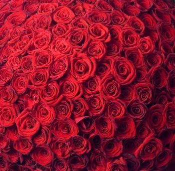 l eusses tu cru !!??? 999+roses
