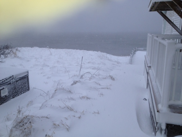 blizzard cape cod