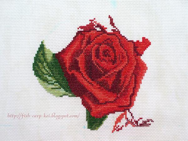 Процесс вышивки крестом - красная роза