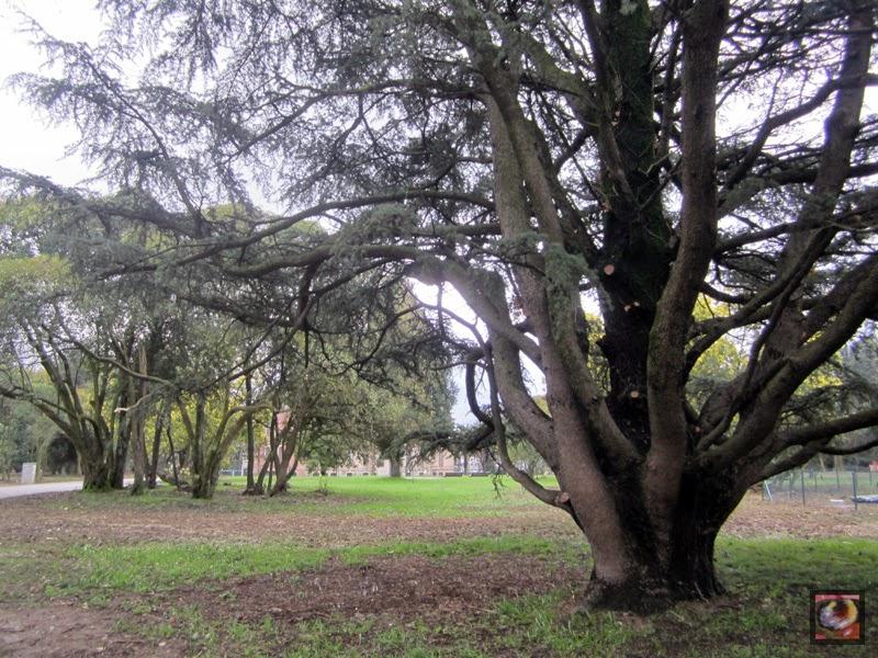 Parque Munoa en Barakaldo (Bizkaia)