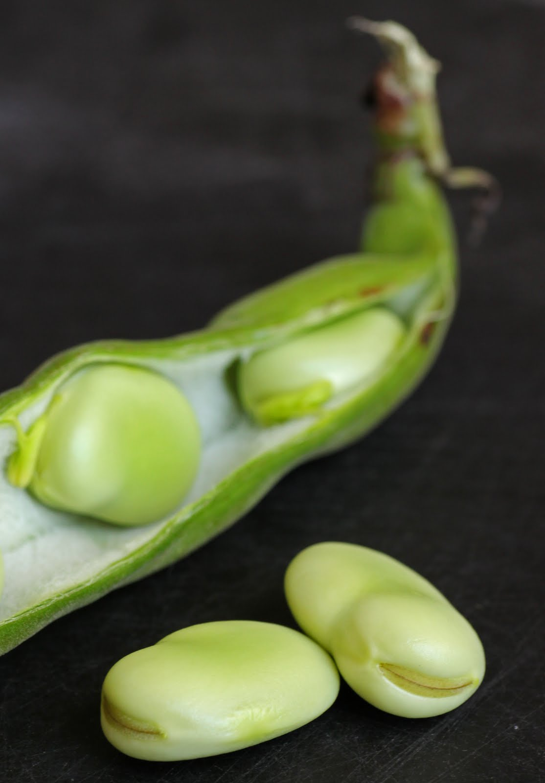 Fava beans in the pod.